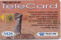 NAMIBIA  PHONECARD (CHIP) KORI BUSTARD-1999 -NAM 90-USED(bx1)