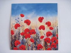 CPM  Sunset Poppies Hilary Mayes T.B.E.  14 X 14 Cm Les Coquelicots - Pittura & Quadri