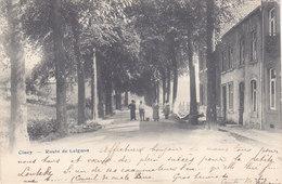Ciney - Route De Leignon (animée, 1906) - Ciney