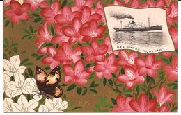 N.Y.K. LINE S.S. SUWA MARU JAPAN  +/- 1907 BLOEMEN EN VLINDER  R 784 Not Posted - Paquebots