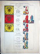 CAVALERIE LEGERE FRANCAISE ET ETRANGERE PLANCHE COULEUR PRESENTANT LES TENUES ET LES ETENDARDS DE DIVERS REGIMENT - Livres, Revues & Catalogues