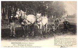Bretagne (Collection E. Harmonic) Agriculture - Attelage De Labour (Folklore, Costumes Scènes Et Types) - Attelages