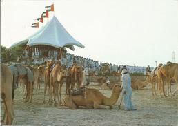 Camel Race.  ( Scan Veerso). - Emirats Arabes Unis