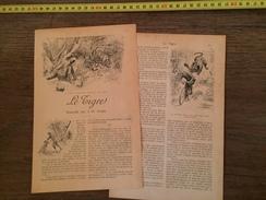 ENV 1900 LE TIGRE NOUVELLE PAR J H ROSNY NIEUWENHUYS - Collections