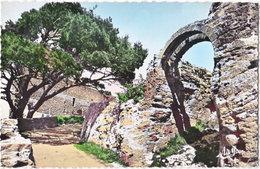 13. Pf. MIRAMAS. Les Ruines Du Vieux Miramas. 1 - Francia