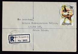 Malaysia: Registered Cover, 1977, 1 Stamp, Butterfly, Bicolor R-label Kuala Trengganu (minor Discolouring) - Maleisië (1964-...)