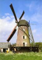 BERENDRECHT (Antw.) - Molen/moulin - De Gerestaureerde Buitenmolen Opgezeild In Werking Op Een Mooie Lentedag In 2004. - Antwerpen