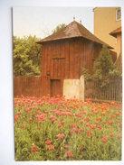 """CPSM """"Elsenstadt Haydn Museum - Haydns Gartenhaus"""" - Autriche"""