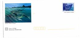 Mayotte_2000_Baleine à Bosse_sous Blister - Ganzsachen & PAP