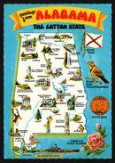 Carte Géographique De L'Alabama - Écusson - USS Alabama BB 60 - Camellia State Flower - Birmingham - H.S. CROCKER - Etats-Unis