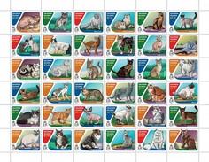 Solomon Eilanden - Postfris / MNH - Sheet Katten 2016 - Isole Salomone (1978-...)