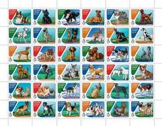 Solomon Eilanden - Postfris / MNH - Sheet Honden 2016 - Solomoneilanden (1978-...)