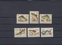 Tchécoslovaquie - Poissons Divers - Neufs** - Année 1966 - Y.T. N° 1475/1480 - Tchécoslovaquie