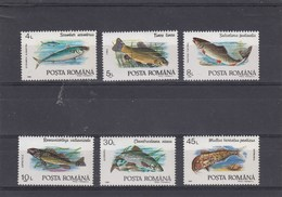 Roumanie - Poissons Divers - Neufs** - Année 1992 - Y.T. N° 3991/3996 - 1948-.... Republieken