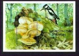 COMORES   923  MINT NEVER HINGED SOUVENIR SHEET OF MUSHROOMS  (  BIRDS - Paddestoelen