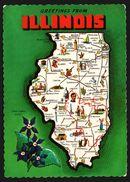 Carte Géographique De L'Illinois - Springfield - Chicago - Flower Butterfly Violet - Bird Cardinal - DEXTER PRESS - Etats-Unis