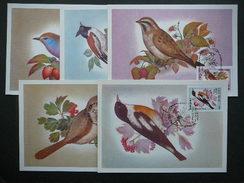 USSR Russia Sowjetunion 5x Cards 1981 Maximum Card # Song Birds. - 1923-1991 URSS