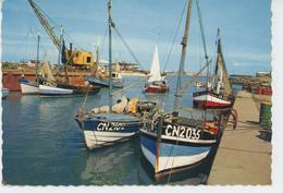 COURSEULLES SUR MER - Bateaux De Pêche Dans Le Port - Courseulles-sur-Mer