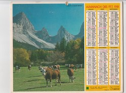 - CALENDRIER PTT Année 1981   - - Big : 1981-90