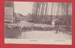 Claye Voisin  --  Berger Avec Moutons - Autres Communes