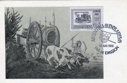 """ARGENTINA 1960 """"Water Cart"""" Bull, Painting,  Maxicard FD Maximum Card"""