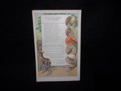 Clermont - Ferrand.  Etablissements Bergougnan. Chromo 9 X 14. Fables.Le Loup , La Chèvre Et Le Chevreau. - Other