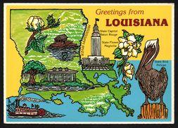 Carte Géographique De Louisiane - Pelican State Bird - State Flower The Magnolia - Mississippi River - Golf Du Mexique - Etats-Unis