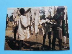 Séchage Des Peaux De Serpents - Drying Of Snakes Skins (Afrique En Couleurs) - Anno 19?? ( Zie Foto Details ) !! - Cartes Postales