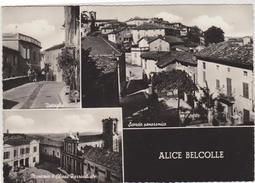 ALICE BELCOLLE (ALESSANDRIA) -F/G   B/N LUCIDO  (271014) - Italia