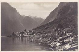 Norge, Norway, Noorwegen, Gudvangen (pk33302) - Norvège