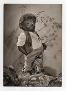 MECKI - In Erwartung - Viaggiata Nel 1954 - (FDC3152) - Cartolina Nr. 3 - Mecki