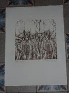 AFFICHE - ANCIENNE PETITE  LITHOGRAPHIE  Du  CARNAVAL DE BINCHE  De 1975 - N° 186/200 Et Signée - Posters
