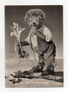 MECKI - Sie Sollen Dir Gluck Bringen - Viaggiata Nel 1955 - (FDC3153) - Cartolina Nr. 26 - Mecki