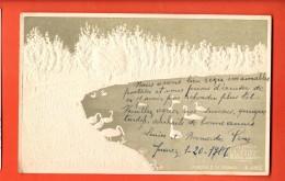 IAB-24 Litho Relief Buenos Aires Litho Parque 3 De Febrero , Publicita La Mutua. Used In 1906 To France - Argentina