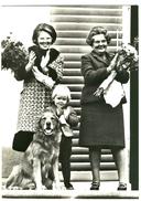 The Netherlands - Holland, H.M. Koningin Juliana & H.K.H. Prinses Beatrix & Z.K.H. Prins Alexander, Nr. 1180 - Koninklijke Families