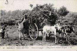 REGIONALISME BRETAGNE 18 MOEURS TYPES BRETONS DANS LA CAMPAGNE CHARGEMENT SAPINS - Bretagne