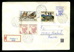 Lettre 1988,entiers Postaux Tchecoslovaquie Husak 1 Kcs En Recommandée,papillon,maison Traditionnelle En Bois - Covers