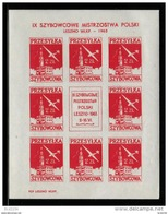 POLAND 1963 9TH NATIONAL GLIDING CHAMPIONSHIPS LESZNO SHEET GLIDER MAIL STAMP NHM CINDERELLA AIRPLANE AIRCRAFT PLANE - Airmail