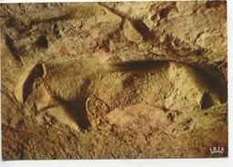 Les Eyzies De Tayac : Cheval Sculpté En Haut Relief (abri Du Cap Blanc) N°13 - France