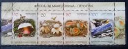 MACEDONIA 2013 Flora - Mashrooms MNH - Macedonië