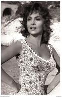 Sexy GINA LOLLOBRIGIDA Actress PIN UP PHOTO Postcard - Publisher RWP 2003 (04) - Artistes
