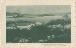 345 - Fra L'intrico Dei Cespi In Cacciatore Muove Celere Il Passo E Spia Lontano. - Filosofia & Pensatori