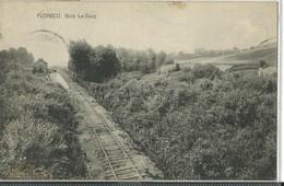 Flobecq Bois.La Gare - Flobecq - Vloesberg