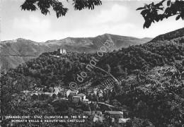 Cartolina - Granaglione Borgata Valle E Castello - Bologna