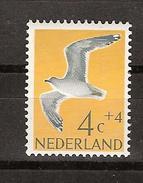 NVPH Netherlands Nederland Niederlande Pays Bas Holanda 752 MNH ; Meeuw, Gull, Mouette Gaviota 1961 NOW MANY BIRD STAMPS