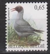Belgie Belgique Belgica Belgium MNH ; Meeuw, Gull, Mouette Gaviota Kapmeeuw NOW MANY BIRD STAMPS