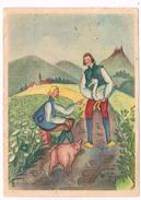 ILL-210  LISELOTTE DELSENROTH : Hans Im Glück - Other Illustrators