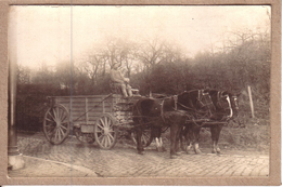 MILITARIA - GUERRE 1914-18 ?? - CARTE PHOTO NON SITUEE - FOURRAGERE ATTELEE DE 3 CHEVAUX - Militaria
