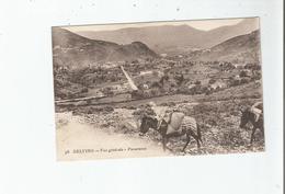 DELVINO (PIRIN MACEDOINE) 36 VUE GENERALE PANORAMA (MULES) 1918 - Macédoine