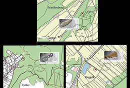 Liechtenstein 2016 Maxi Cards - Archaeological Finds In Liechtenstein: Utensils